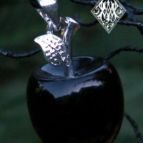 Apples in Witchcraft . Witches Apple Lore & Spells