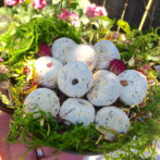 How to Make your own Offering Stones – For Giving Back to Nature & Faeries